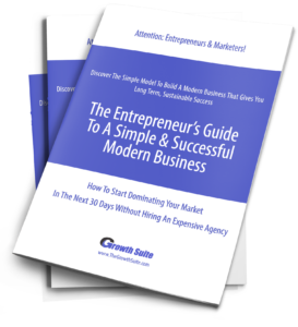 Entrepreneurs Guide To Modern Business Model stack of books